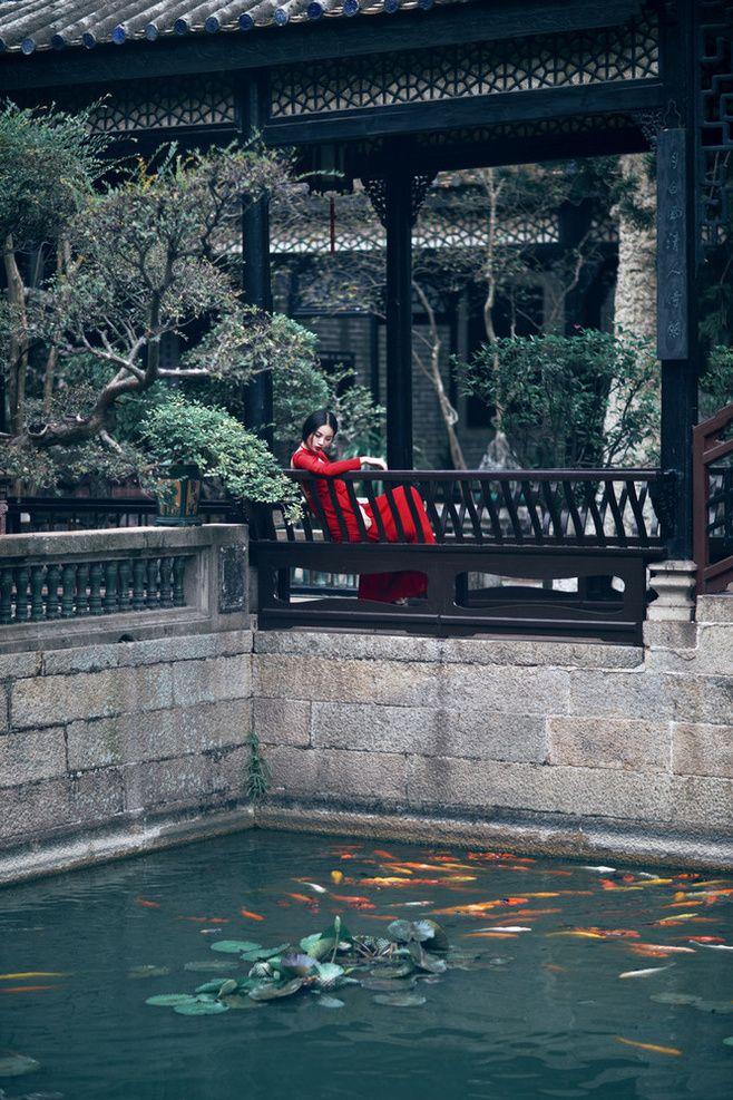 A corner of Chinese garden