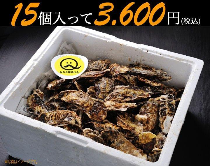 三陸石巻雄勝の浜でとれたプリプリの牡蠣を味わう!       殻付き牡蠣(Mサイズ:150~200g) 15個~かき/カキ/産地直送
