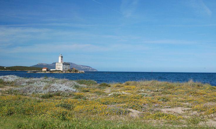 #Sardaigne #Olbia . Petite ville de Sardaigne, Olbia est la porte d'entrée la plus importante de l'île. Loin des plages, elle est située au cœur d'une grande baie abritant un port important datant de l'époque romaine qui fait le bonheur des curieux de passage. Signifiant « bonheur » en Grec, son nom fait de ce lieu un centre très agréable à vivre, à visiter et à découvrir. http://vp.etr.im/XY