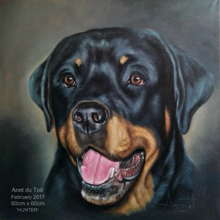 Oil on canvas 60cm x 60cm Commissioned