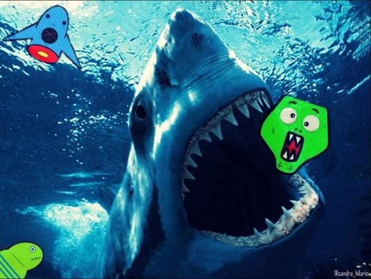 HOLY CREEPS! Shark is about to complete his meal & lil' red devil's freaking out! :O @Sun Deep #SharkWeek #CreepsWeek