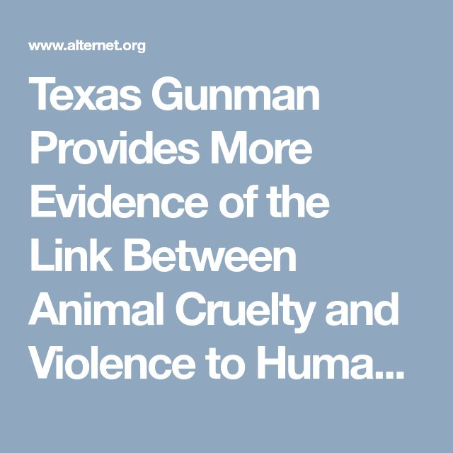 an analysis of a documentary about animal abuse and cruelty Perhaps when we look at the connection between animal cruelty and human violence, we would focus more attention on those who abuse animals to prevent them from escalating to crimes against people.