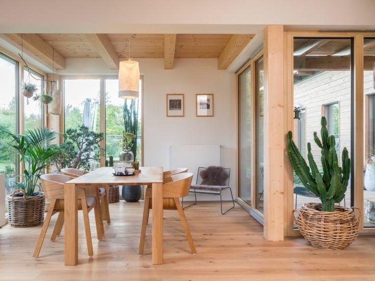 06 interiér dřevostavby a rostliny
