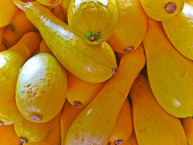 Psoriasis Awareness: Foods to Eat: Vegetables: (All fresh and organic) (Raw, steamed, juiced or roasted) - yellow squash