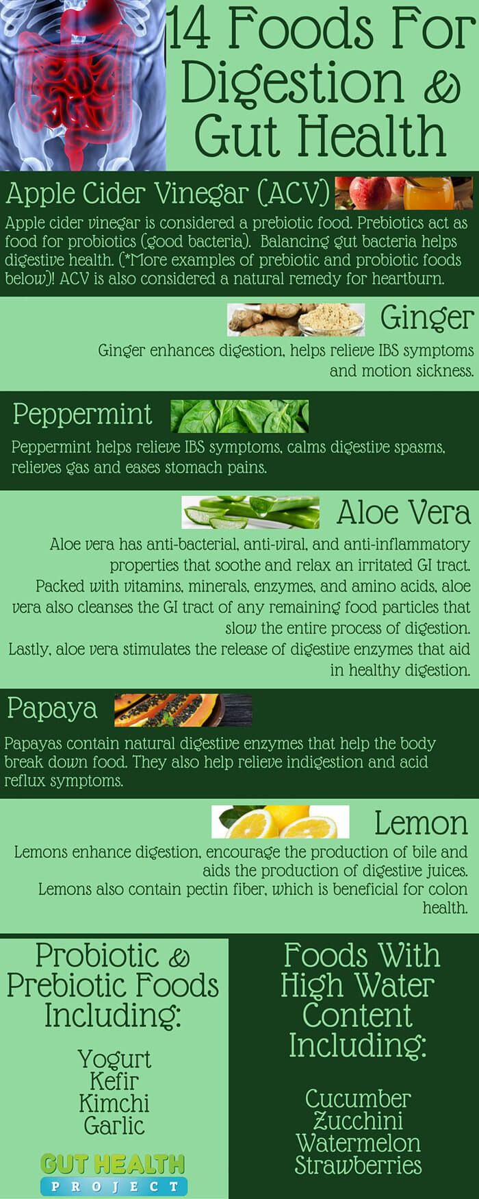 Certain fruits, vegetables and herbs can promote good digestion & gut health. See 14 foods for digestion, along with a list of food types…