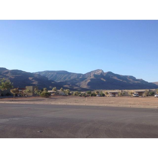 Taken on a morning walk in Alamogordo, New Mexico!