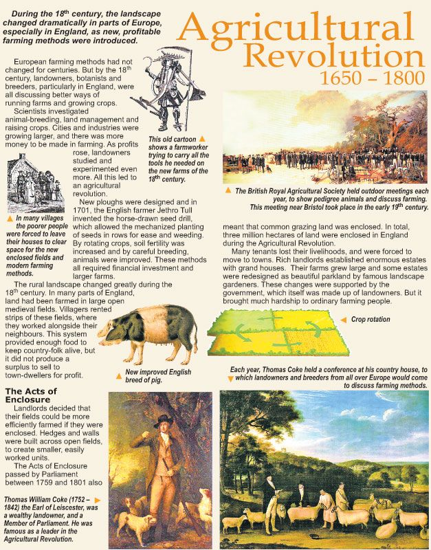 essay on industrial agriculture Related documents: essay on industrial revolution and 1800 s industrial workers industrial revolution essay the textile, manufacturing, and agricultural industry, along with the new forms of transportation drastically transformed great britain.