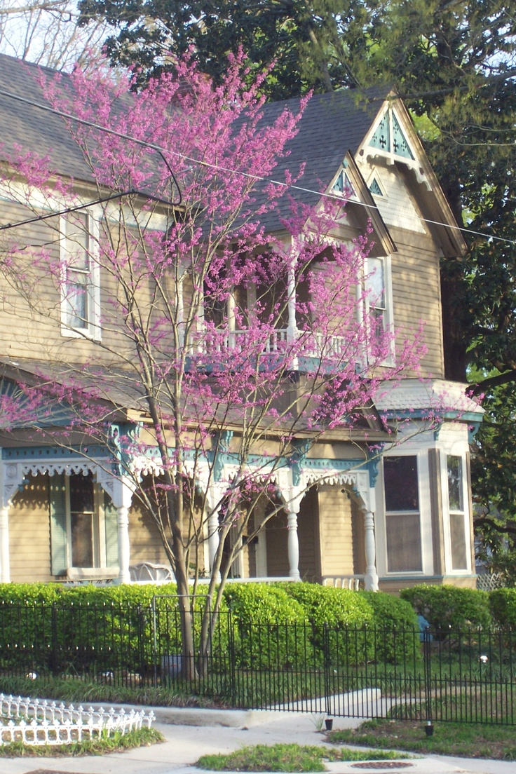 Victorian homes for sale in mississippi - Love The Old Victorian Houses As Seen At Http Cathylwood Wordpress