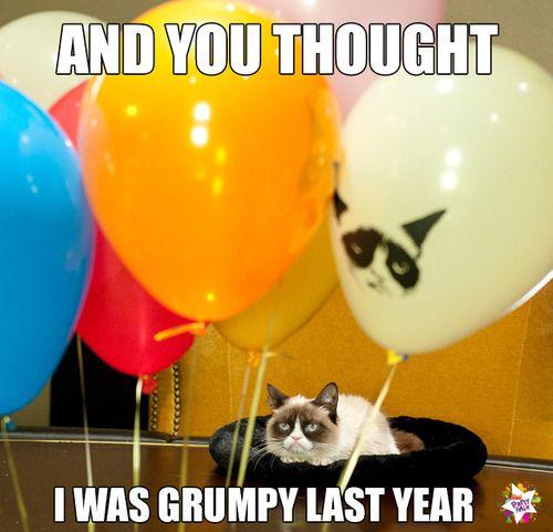 Happy Birthday Grumpy Cat !!!