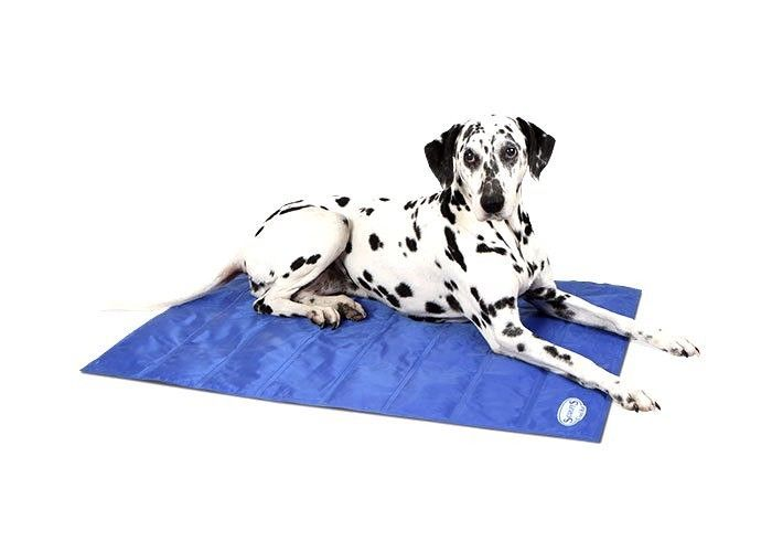 Ancol Chillax Dog Puppy Cooling Mat Pad Bed Hot Weather or Hot Spots Travel Home #ancol