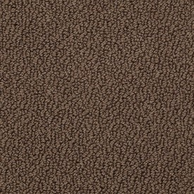 breathtaking home berber carpet for the entry room. Shows less dirt?