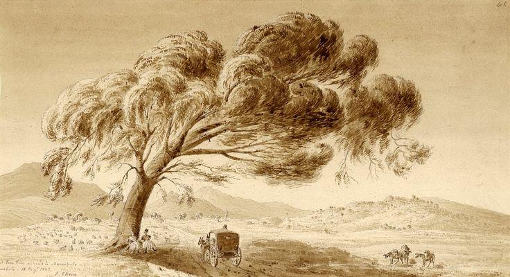 James Skene of Rubislaw (1775-1864)-Πεύκο στο δρόμο για το Μαρκόπουλο