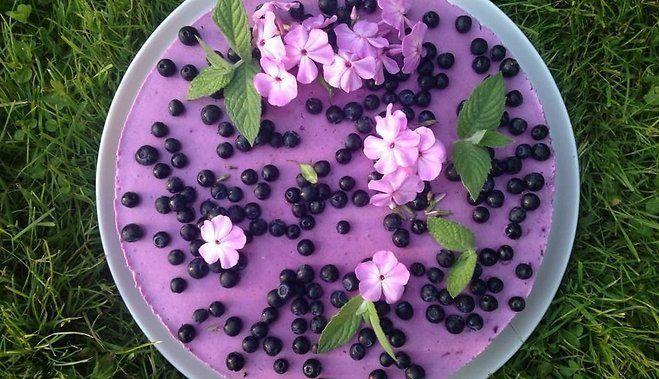 Пальчики оближешь: черничный йогуртовый торт (без выпечки)