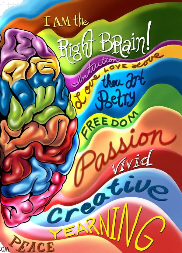 Left Brain Right Brain Illustration By Bryant Arnold. Most people dominantly use one or the other, but a few use both hemispheres equally well.