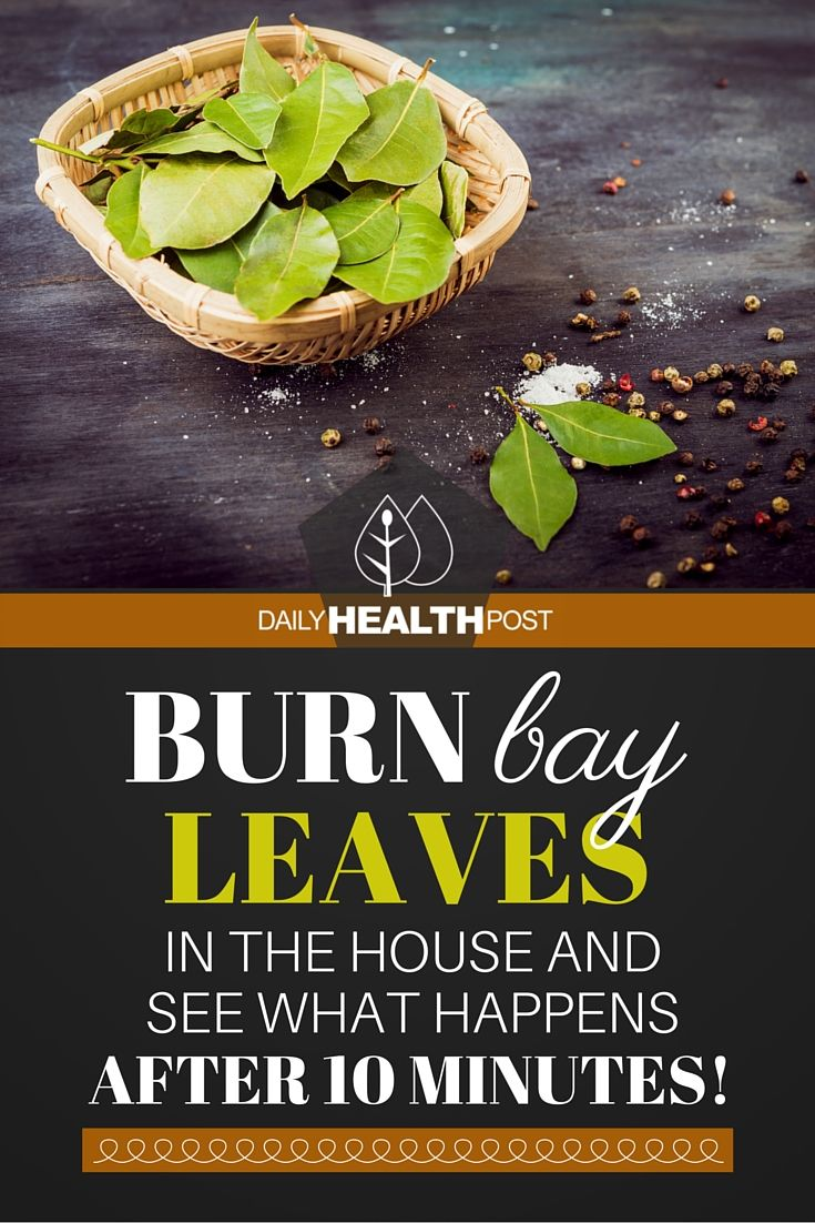 Burn Bay Leaves in the House and See What Happens After 10 Minutes! via @dailyhealthpost | http://dailyhealthpost.com/burn-bay-leaves/