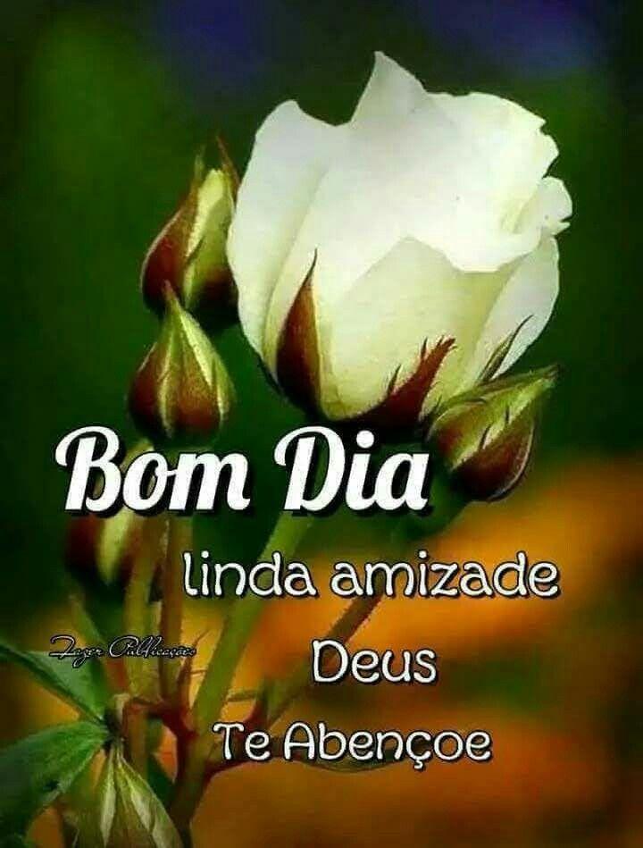 Bom Domingo Mulher De Deus Mulher De Deus Bom Dia Linda Deus