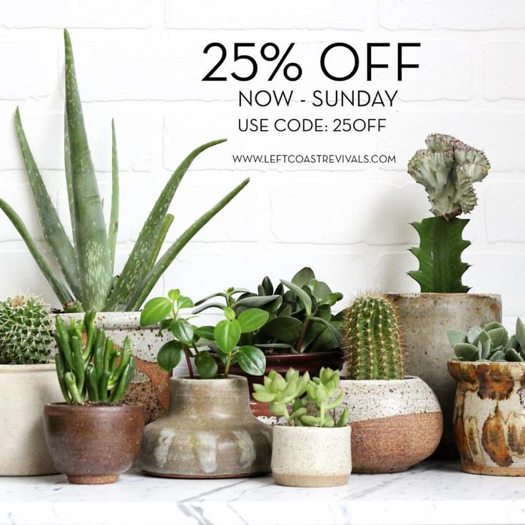 "20 Likes, 2 Comments - Left Coast Revivals (@leftcoastrevivals) on Instagram: ""We're having a moving sale!  25% off the entire shop now through Sunday!  Shop link in profile."""
