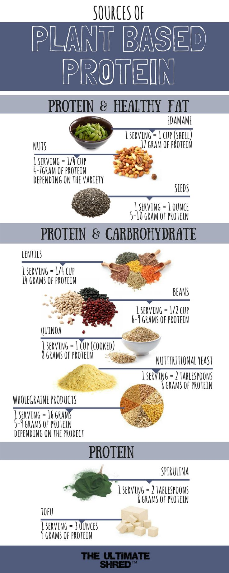 If you're a vegan or vegetarian looking to bump your protein intake, or just curious how to eat sufficient levels of protein on a mostly meat-free, vegan diet, let me help separate the fact from myth and share with you some of the best plant-based protein foods on the planet.