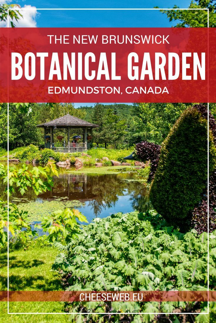Holland park garden gallery brings in annuals from across ontario to - Nature Art Food At The New Brunswick Botanical Garden Edmundston Canada