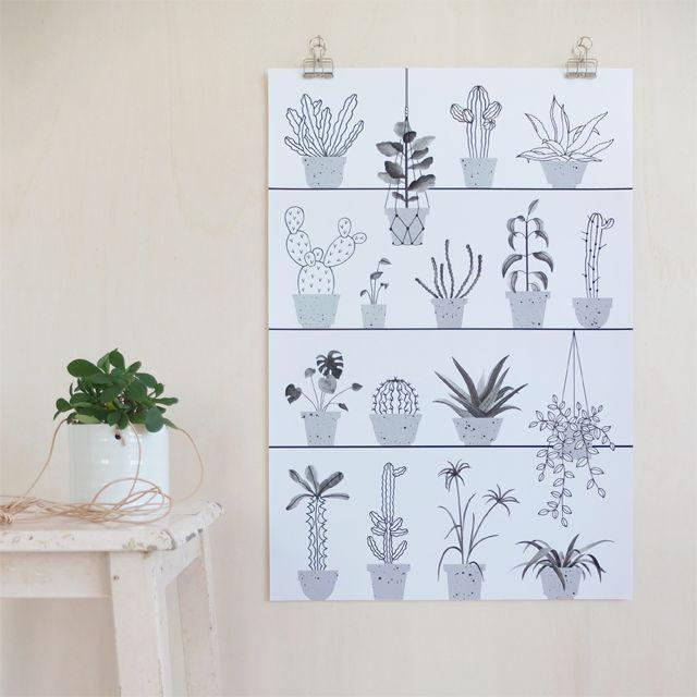 Poster Botanic / Audrey Jeanne