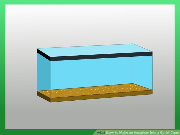 Make an aquarium into a gerbil cage gerbil cages gerbil for Fish tank for hamster