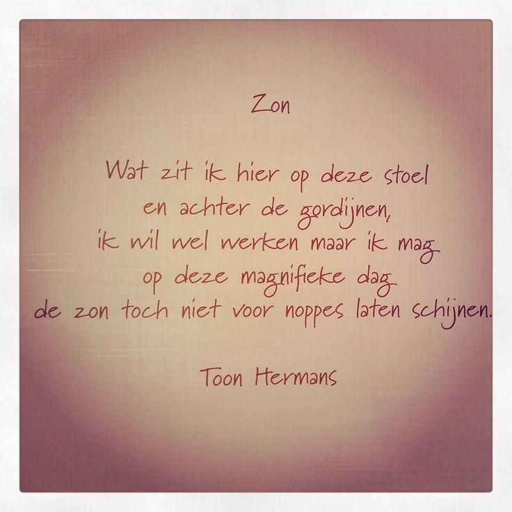 Zon - Toon Hermans