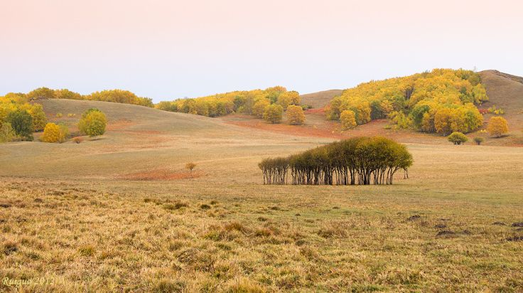 golden fall of rangeland by Guo ric on 500px