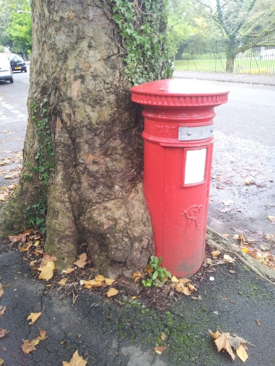 A Letter Box in Cardiff, near Roath Park, being eaten by a tree! #letterbox #letters #snailmail #mail #mailbox #post #postbox #royalmail