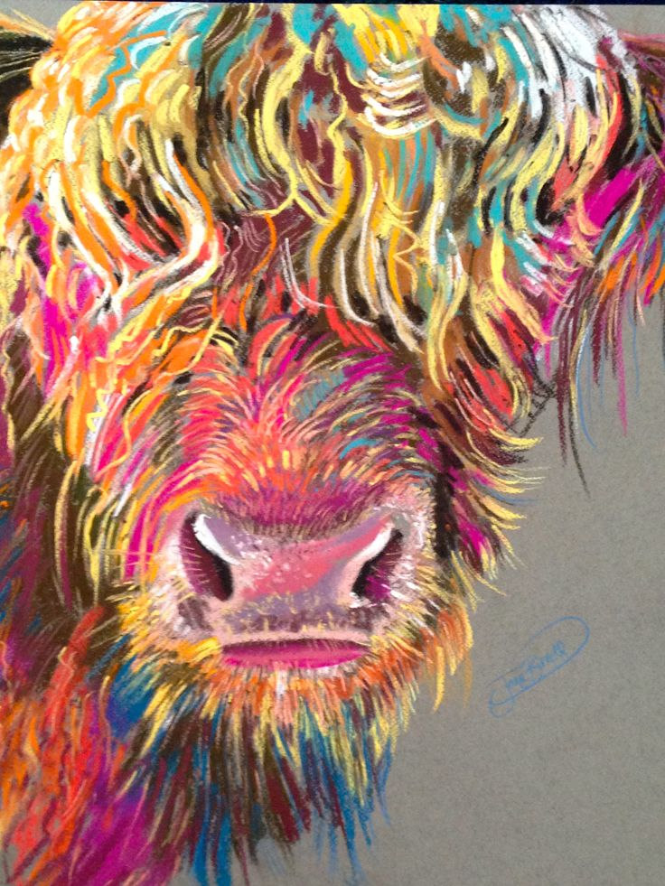 Goldilocks Coo, pastel on Mi-tientes canson, 35x50cms approx