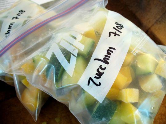 How to freeze zucchini.  For grated squash, steam for a couple minutes, cool and then put into bags to freeze.