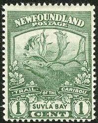 Newfoundland-suvla-bay-1919