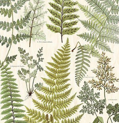 Фото №1: панно с растениями 366104 – Ампир Декор