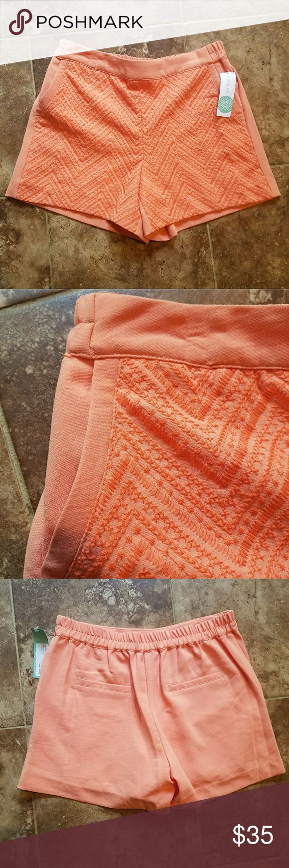 Stitch Fix Skies Are Blue Coral Shorts Size Medium Stitch Fix. Skies are Blue. Coral. Size Medium. New with tags. Skies Are Blue Shorts