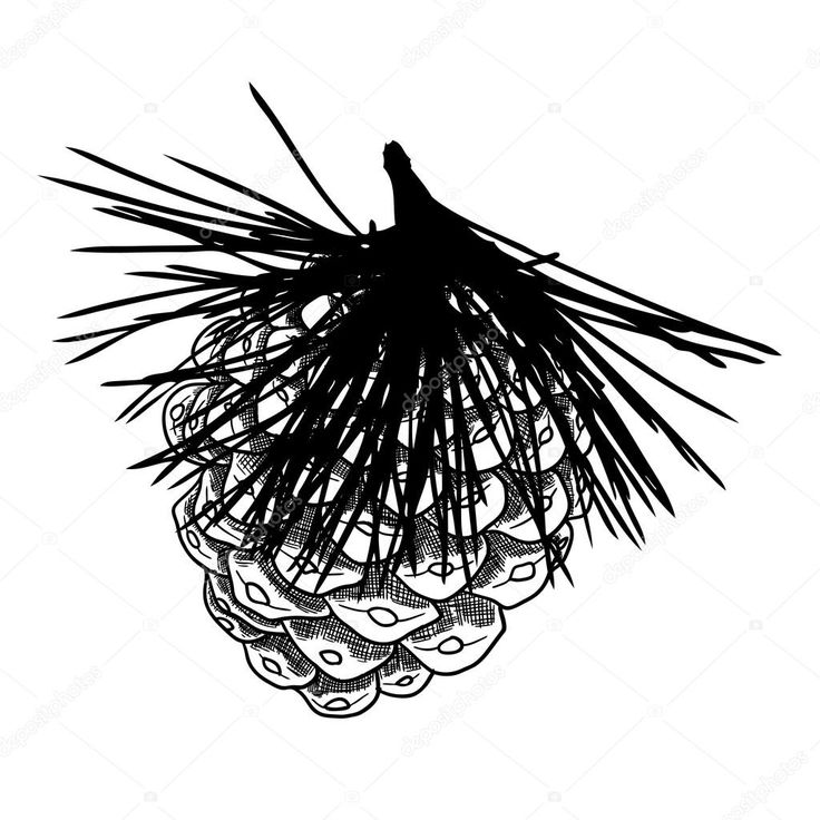 Výsledek obrázku pro kresba tuší technika