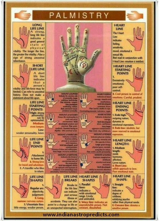 Looking for best Palmistry Readers in Hyderabad? Get the best palm reading, marriage line palm reading, Palmistry services & more at Indian Astro Predicts! http://indianastropredicts.com/palmistry-services/