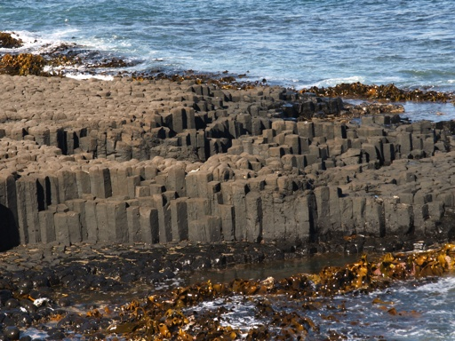 Ohira Bay basalt columns  Chatham Island.( Google this place)