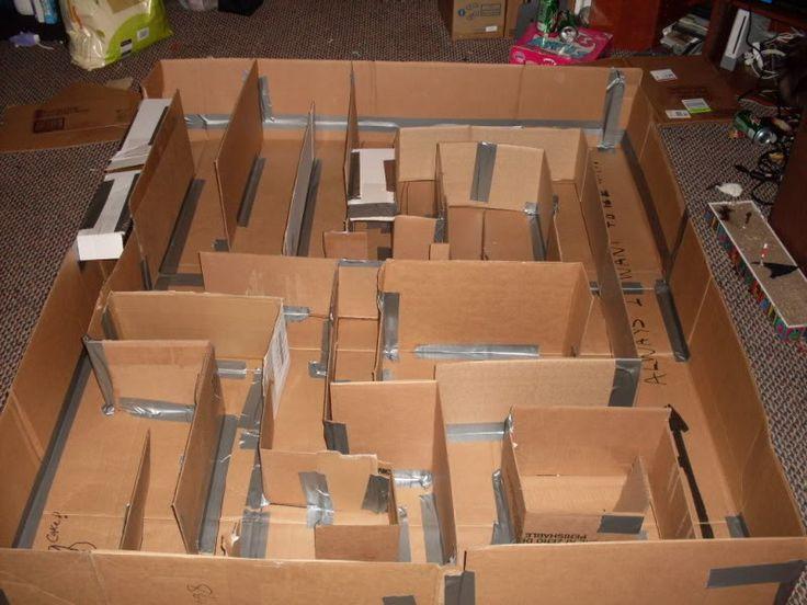 Cardboard Rat Maze (or any small critter) lotsa pics - MISCELLANEOUS TOPICS