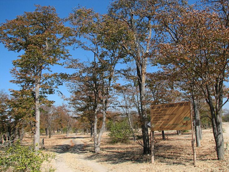 go! Namibia community campsites