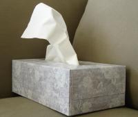 Cómo diferenciar un resfriado de una alergia primaveral