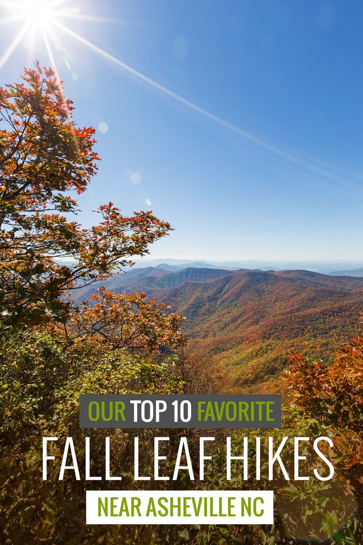 From the book where you might see the beautiful autumn leaves - Hike Our Top 10 Favorite Fall Trails Near Asheville To Some Of Western Nc S Most Beautiful Autumn Leaf Colors