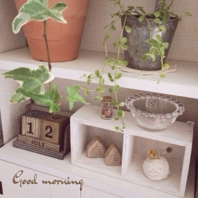植物/ブリキ/ガラスの小物入れ/キューブカレンダー/3Coins/keitan…などのインテリア実例 - 2014-02-12 09:37:53 | RoomClip(ルームクリップ)