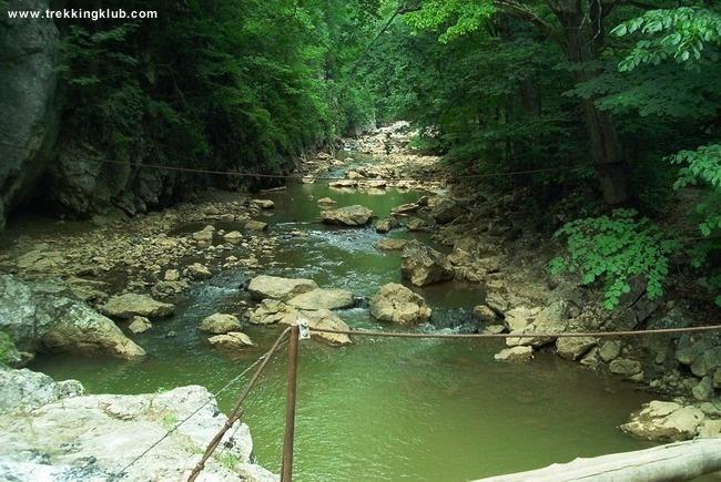 Varghis creek - #Varghis_Gorges, #Transylvania
