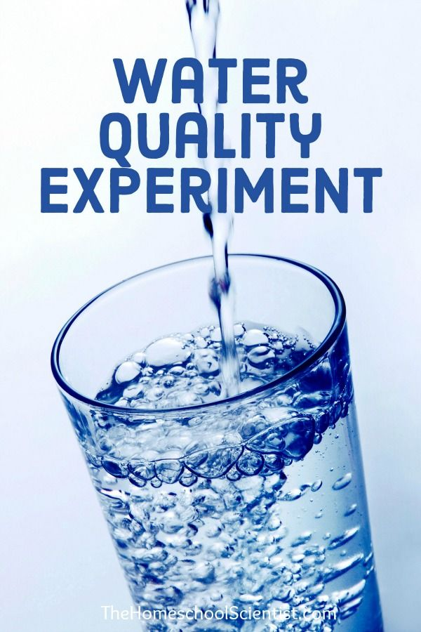 Water Quality Experiment - homeschool science -science fair project- TheHomeschoolScientist.com