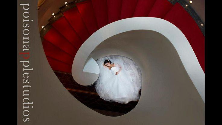 The beautiful Krychelle, shot at the Brisbane Hilton #wedding #photography #brisbane