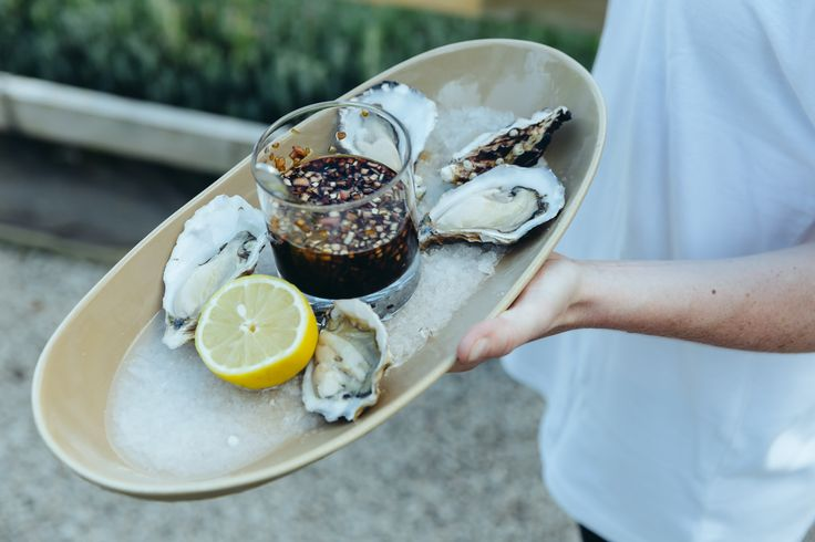 Frenchmans creek oysters