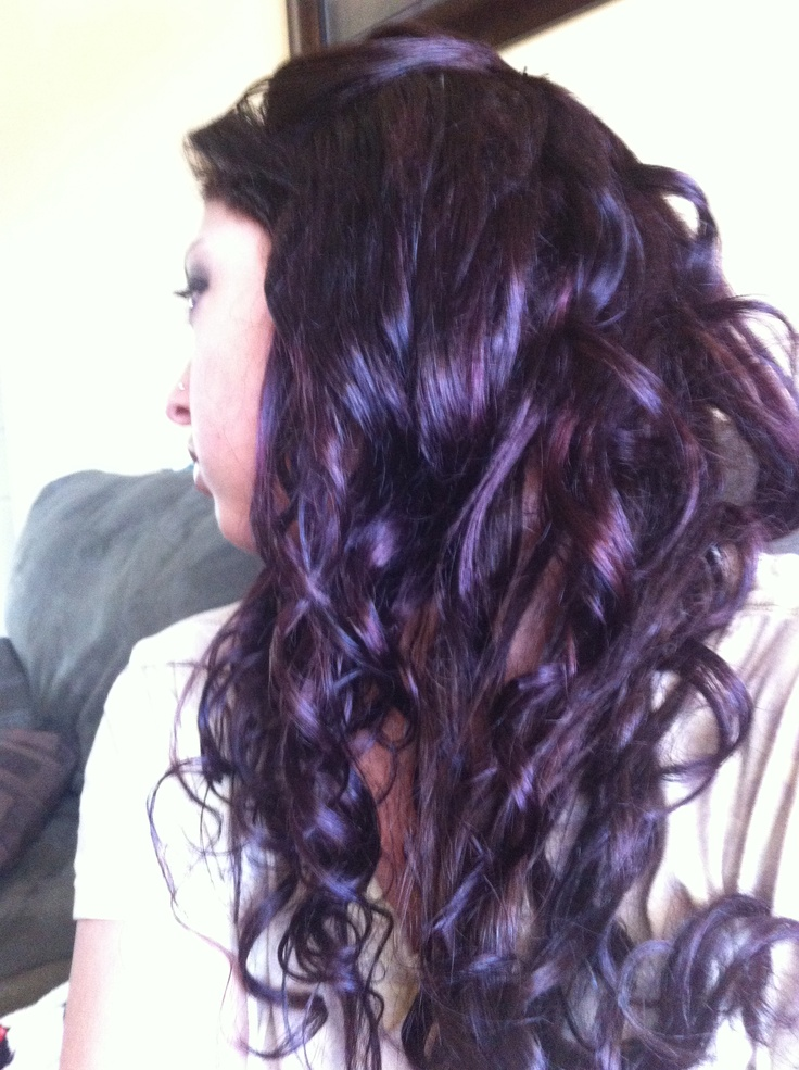 Picture Of Plum Highlights Hair Dark Brown Hairs