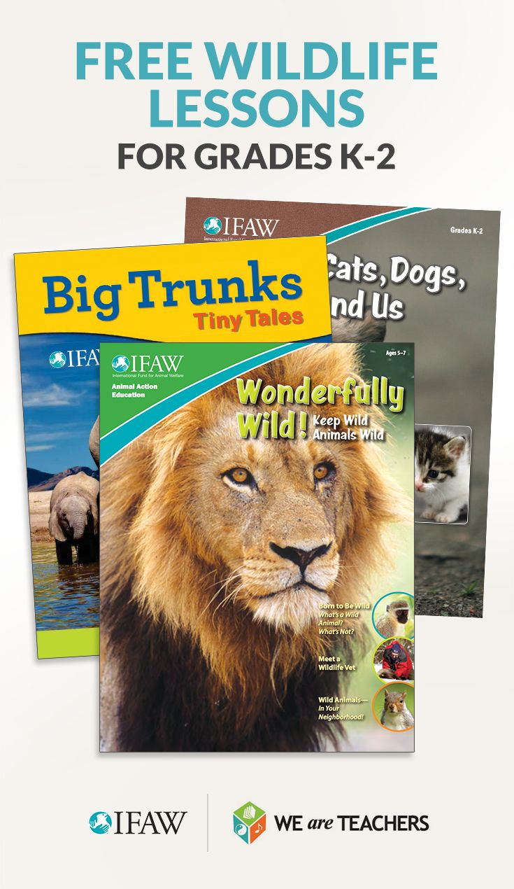 Free lesson plans, teaching guides, student magazines, videos, and more on teaching animals.