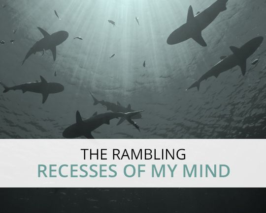 the rambling recesses of my mind