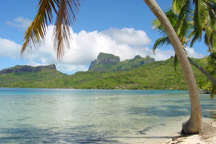 Sitia-Vai palm beach