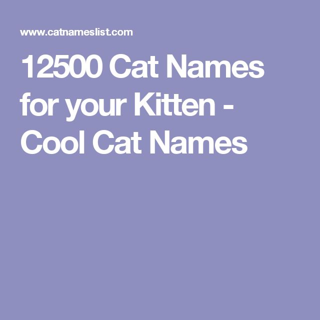 12500 Cat Names for your Kitten - Cool Cat Names